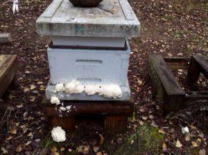 Mehiläispesän lentoaukot oli tukittu polyuretaanivaahdolla.