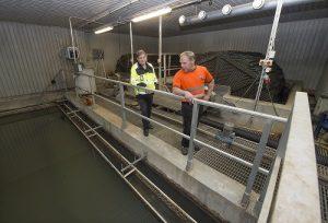 Kosken tekninen johtaja Jouko Sinkko ja vesi- ja viemärilaitoksen hoitaja Rauno Elo tarkkailevat jätevedenpuhdistamon selkeytysallasta.