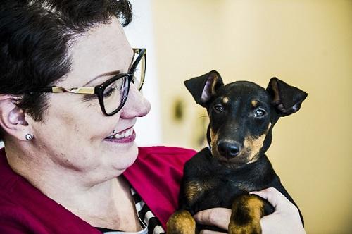 Pet-Vet haluaa kehittää verkon yli toteutettavia eläinlääkäripalveluita. Manchesterinterrieri Rocky on kuitenkin vielä perinteisellä eläinlääkärikäynnillä, kertoo asiakaspalvelusta vastaava Anne Kurki.