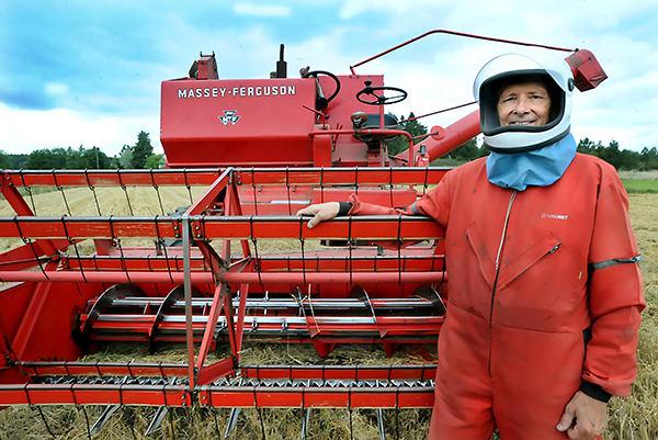 Mies, kypärä ja puimuri. Sauvolaisen Risto Ervelän tämän syksyn puinnit ovat pinta-alaltaan 15,5 hehtaaria. Ne hoituvat samalla MF86-Massikalla, joka hankittiin Ervelän taloon uutena syksyllä 1967. Puidessaan Ervelä käyttää visiirillä varustettua vanhaa moottoripyöräkypärää, jonka sisään hän johtaa letkulla raitista ilmaa. Kuva: Perttu Hemminki, Kunnallislehti.