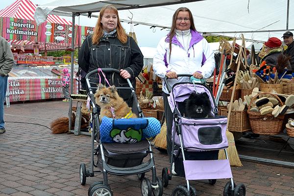 Koirat rattaissa kylille. Eva-Mari Saarinen (vas) ja Jenni Uotila ovat iloisia saadessaan koiransa mukaan pidemmillekin lenkeille rattaiden avulla. – Kyse ei ole koirien laiskuudesta tai omistajien hienostelusta, vaan tarpeesta, kaksikko tähdentää. Kuva: Päivi Sappinen, Uudenkaupungin Sanomat.