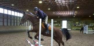 Pekka Larsen ja Criollo Numero Uno treenasivat verryttelyesteellä ratsastuskeskus Tehossa.